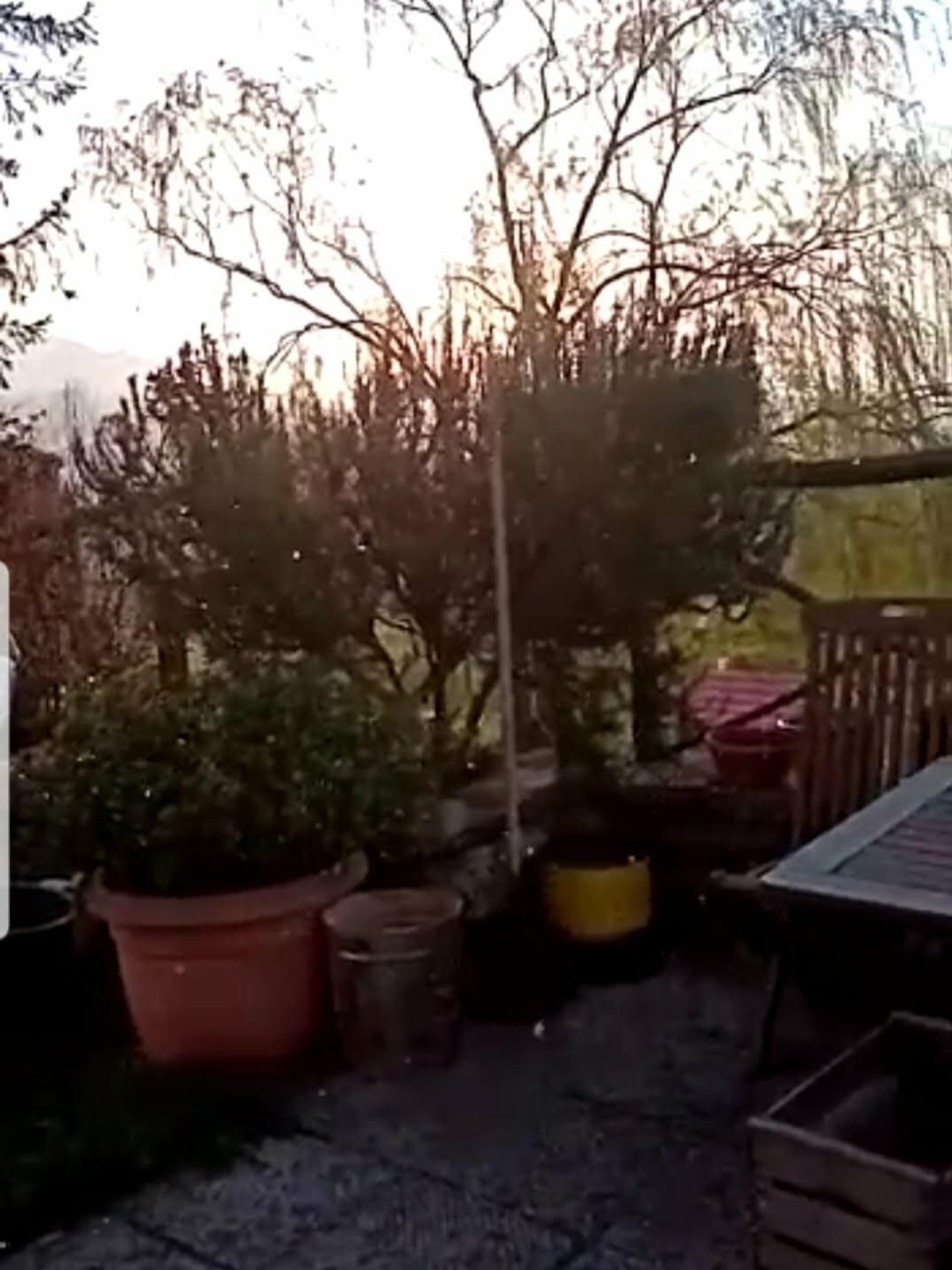 Il Galletto Video neve a scarperia marzo 2021