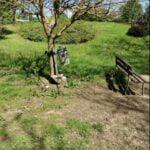Degrado Parco Pertini_d