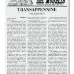 Articolo del 1904-1