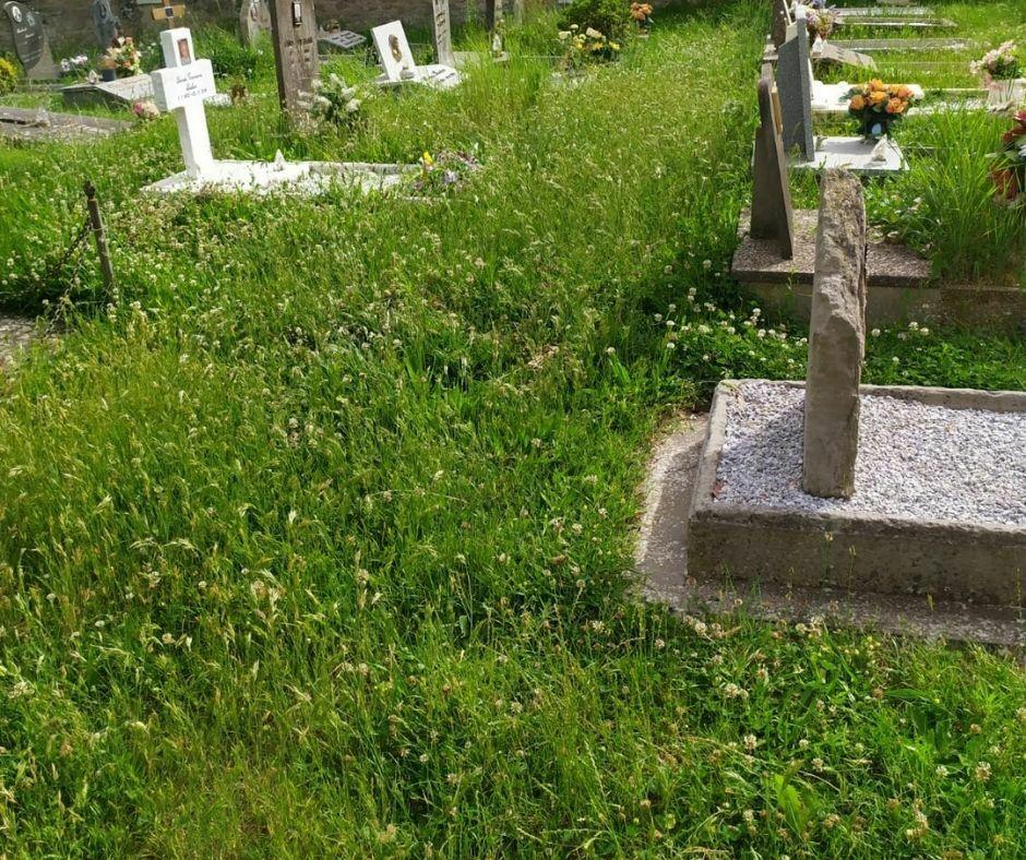 Erba alta cimitero Gattaia