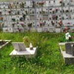 Erba alta cimitero Gattaia_b