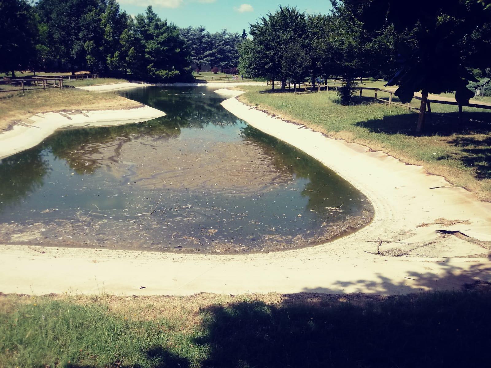 Laghetto Parco Misericordia_b