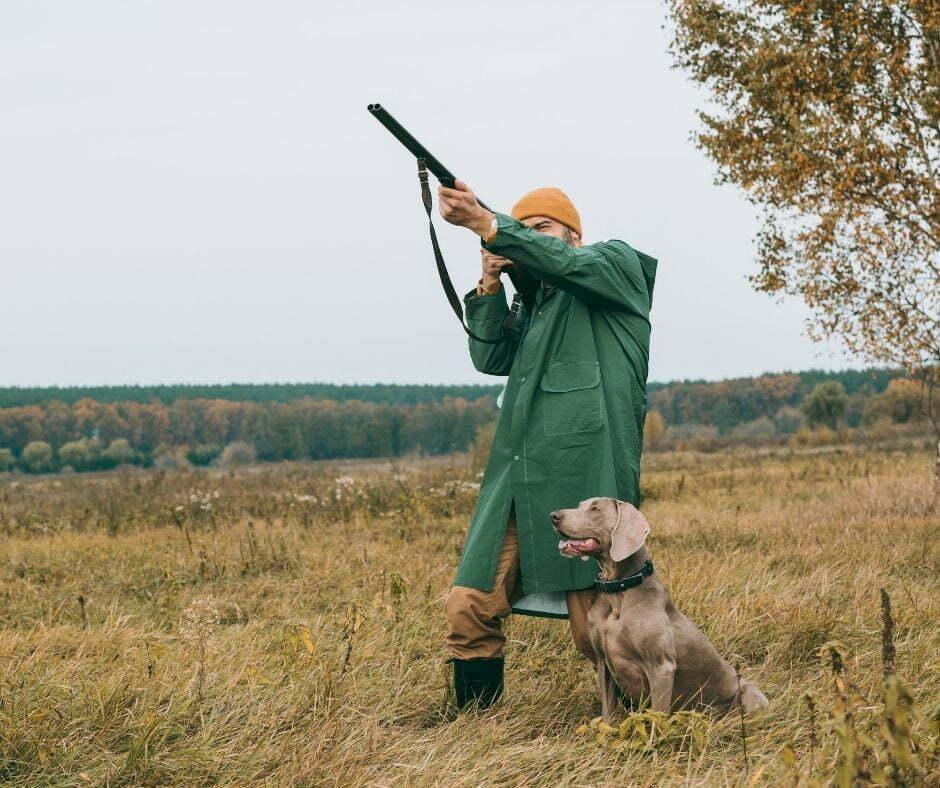 Scena di caccia