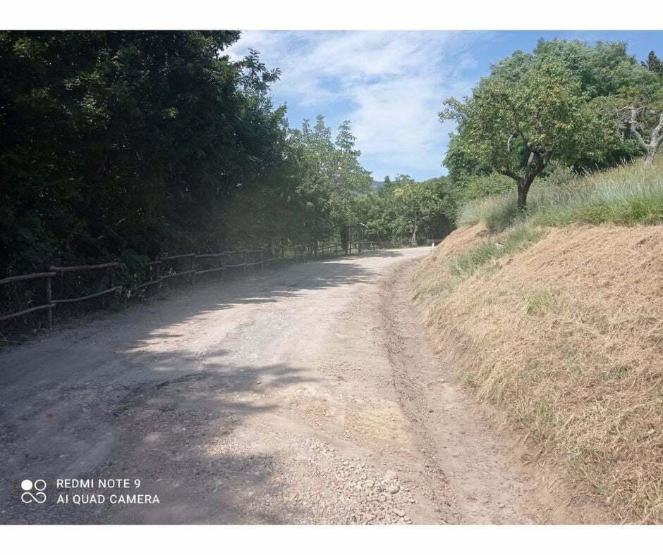 Strada Panoramica