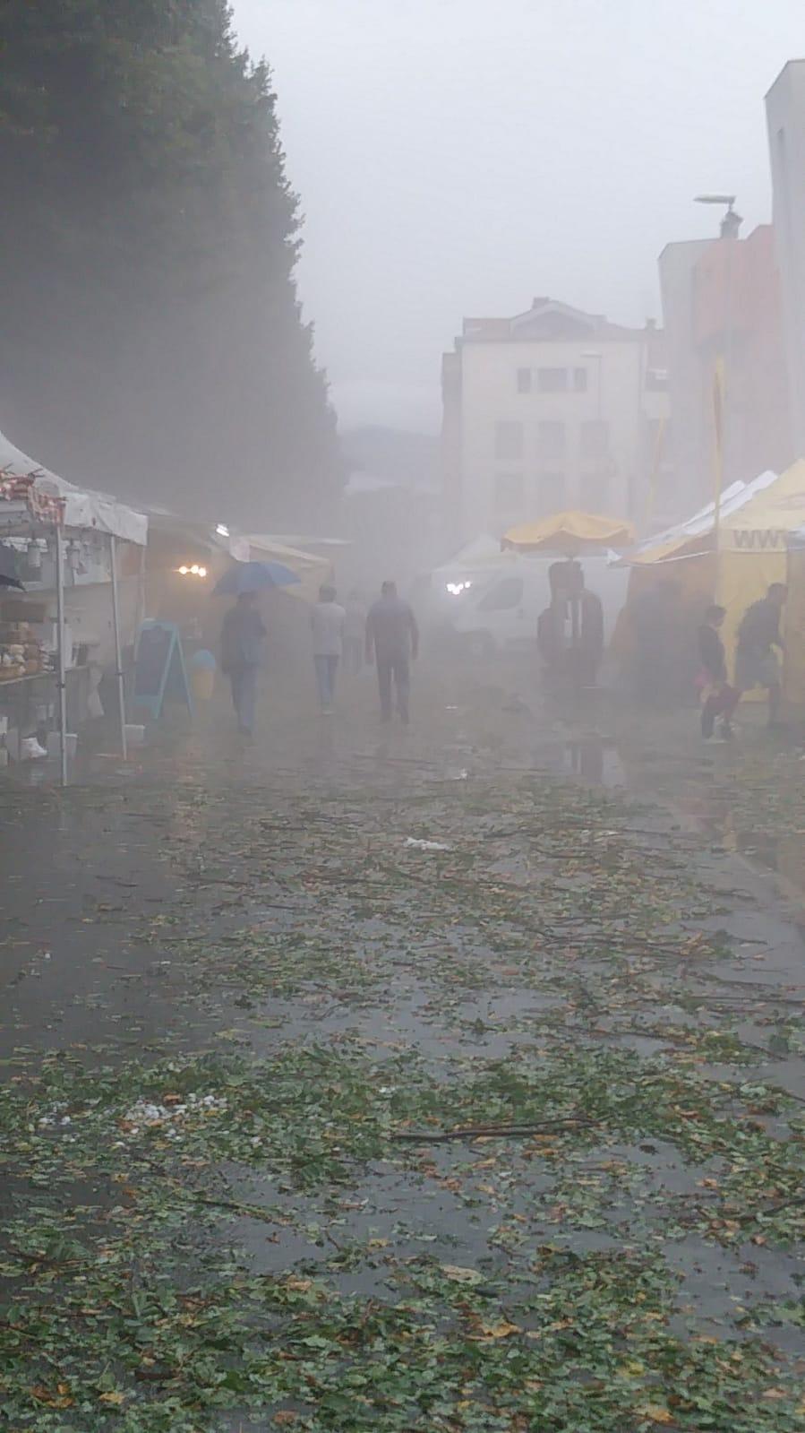 Banchi della FAM sotto la Grandine - Borgo San Lorenzo (3)