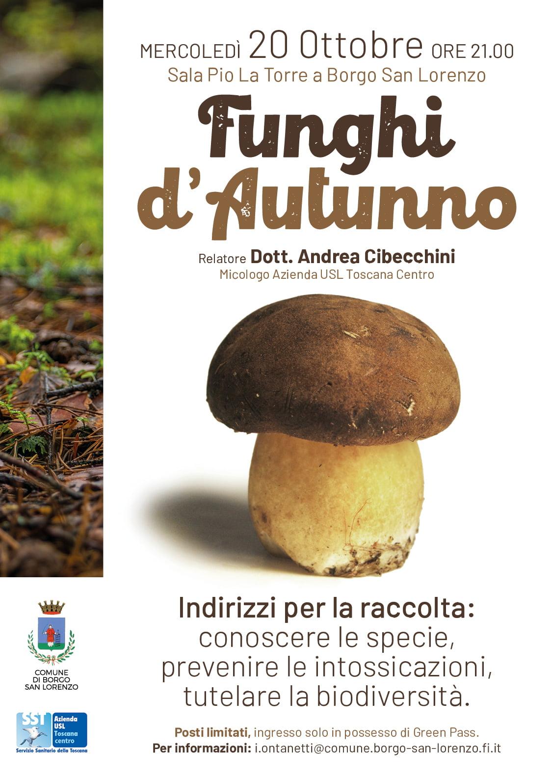 Locandina Funghi