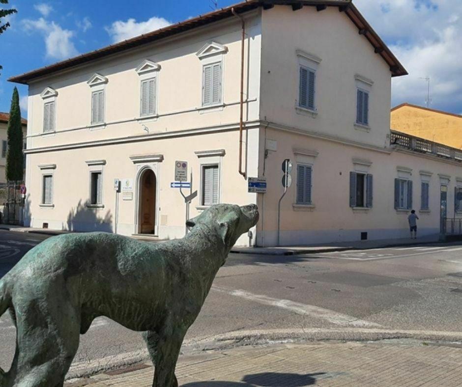 Misericordia Borgo San Lorenzo (2)